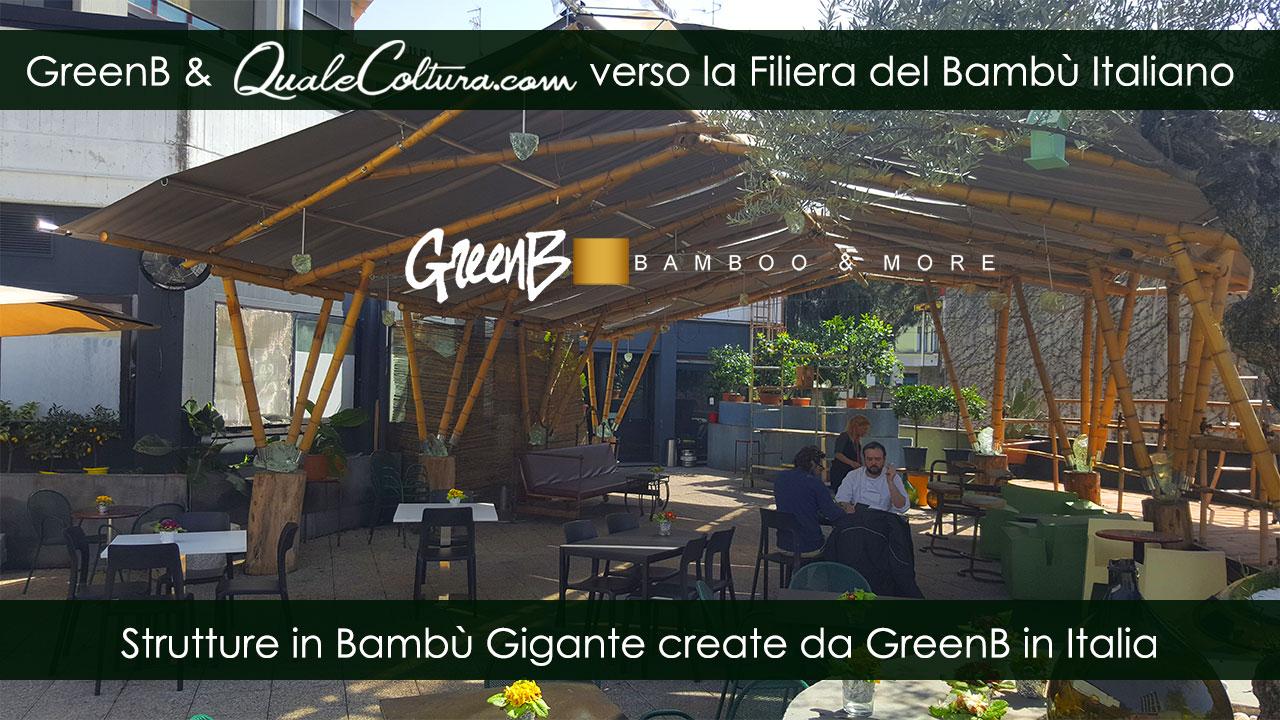 Bambù Gigante – Copertura Vista Larga – Costruzioni di Moso e Madake in Italia – Filiera Bioedilizia