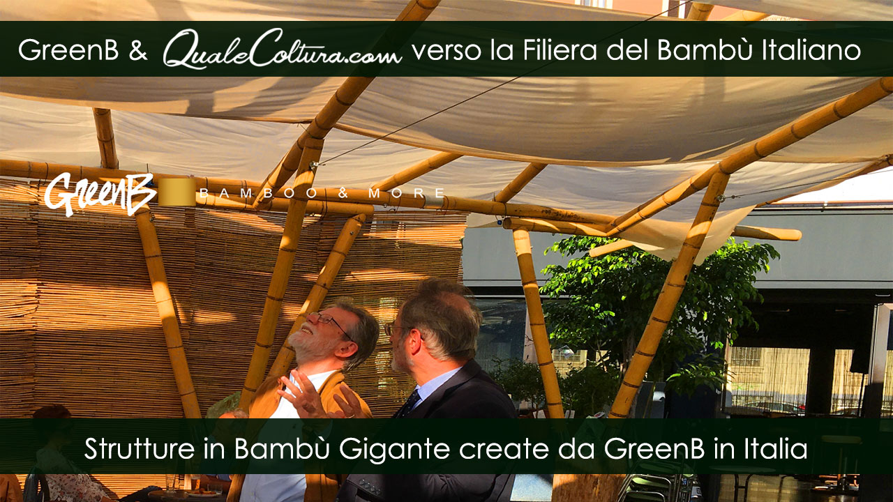 Bambù Gigante – Particolare Copertura – Costruzioni di Moso e Madake in Italia – Filiera Bioedilizia e Architettura