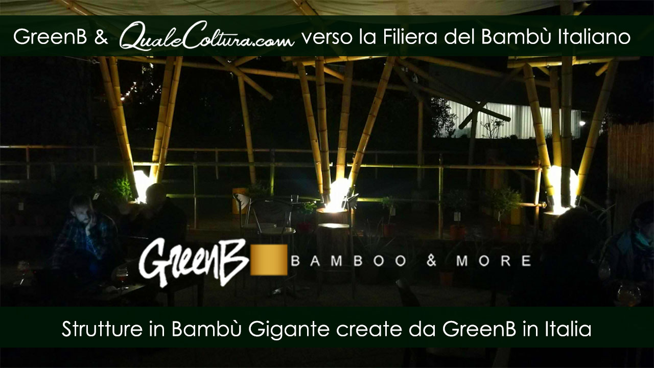 Bambù Gigante – Colonne Strutturali – Costruzioni di Moso e Madake in Italia – Filiera Bioedilizia e Architettura