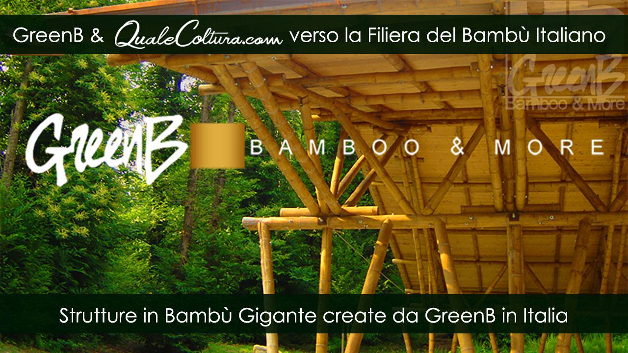 Bambù Gigante – Architrave Struttura – Costruzioni di Moso e Madake in Italia – Filiera Bioedilizia e Architettura