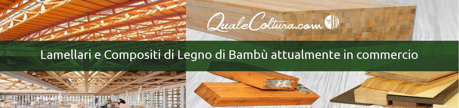 cosa si ricava dal bambù utilizzi del bambù gigante filiera italiana del bambù gigante consorzio italiano bambù quanto si guadagna dal bambù gigante